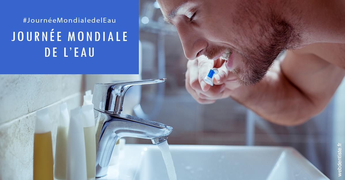 https://dr-caroline-maignan.chirurgiens-dentistes.fr/Journée de l'eau 2